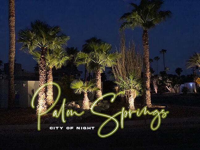 Palm Springs: City of Night